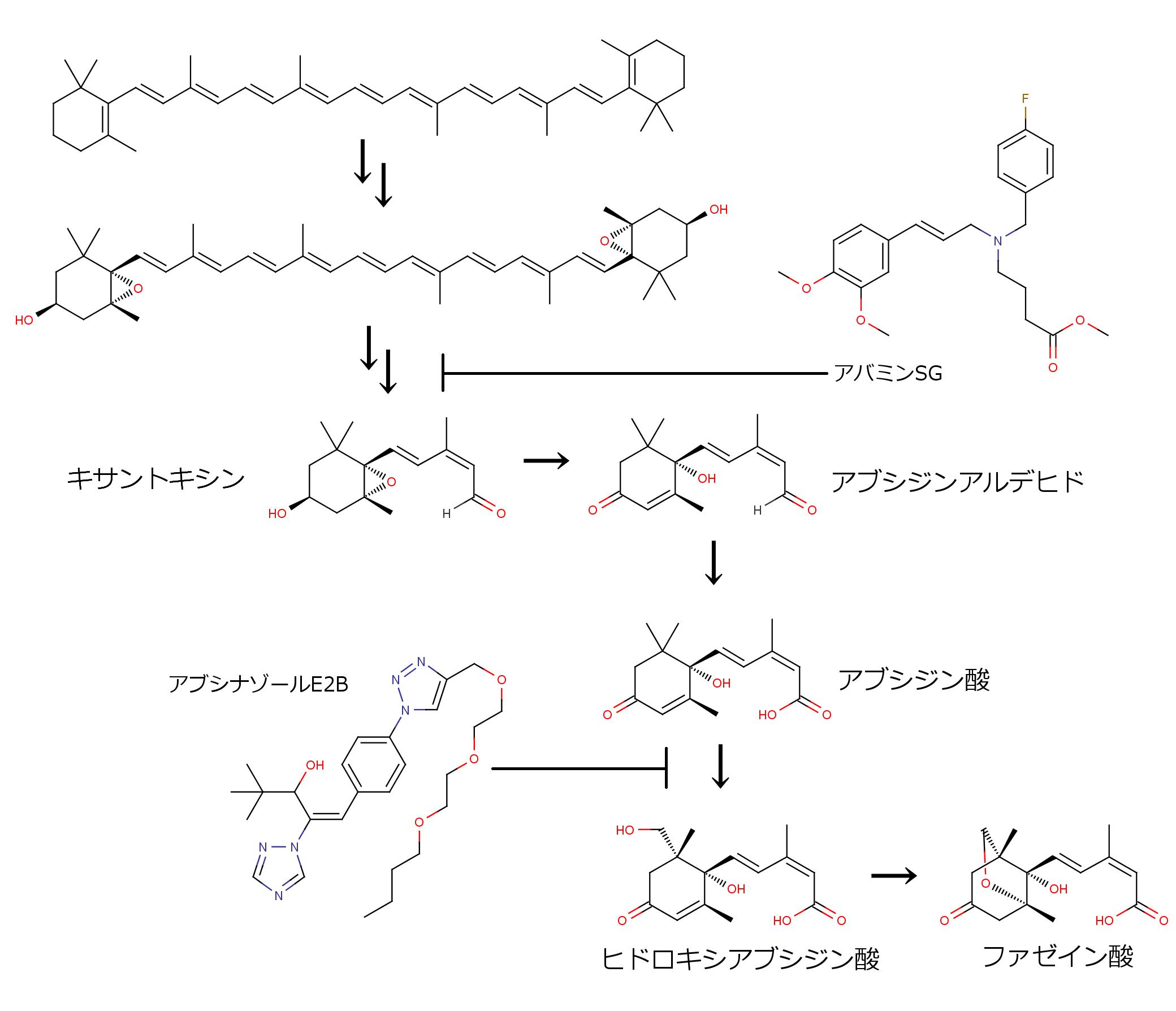 アブシジン酸