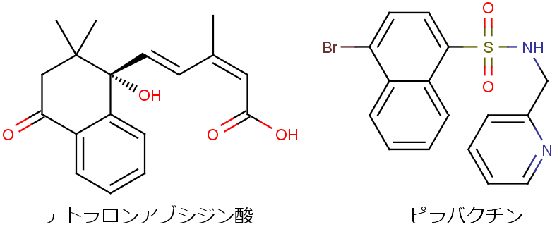 アブシジン酸(abscisic acid; ABA ...